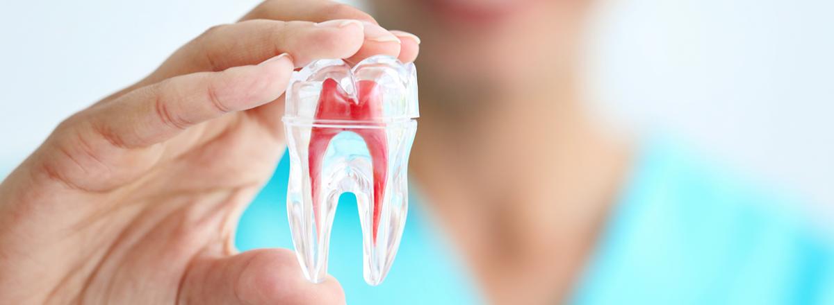 Endodoncia: el tratamiento de rescate de los dientes